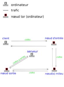tor01